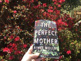 Perfect Mother by Aimee Molloy Book Review