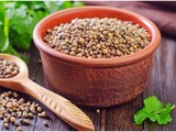 Know the 5 Amazing Benefits of Coriander Powder