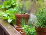 Fabulous Fresh Herbs; Tips & Tricks