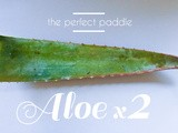 The Perfect Paddle: Aloe Remedies For Skin & Body