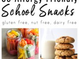35 Dairy Free and Gluten Free Snacks for School