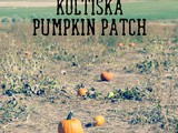 Koltiska Pumpkin Patch