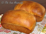 Family Favorites...Classic Rich Bread