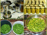 From the Garden...Home Canned Green Beans