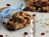 Low-fat Granola Bars with Bananas, Cranberries, and Pecans