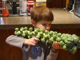 The Brussels Sprouts Bazooka